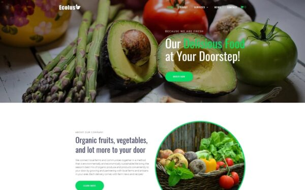 WordPress Kotisivut – Ecolus