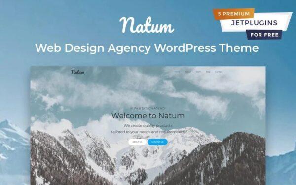 WordPress Kotisivut – Natum