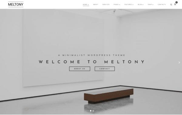 WordPress Kotisivut – Monstroid Meltony