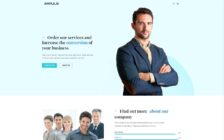 WordPress Kotisivut – Impuls