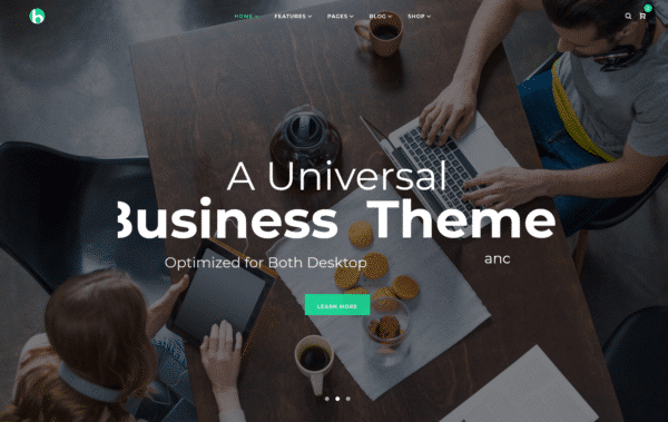WordPress Kotisivut – Bryte Business