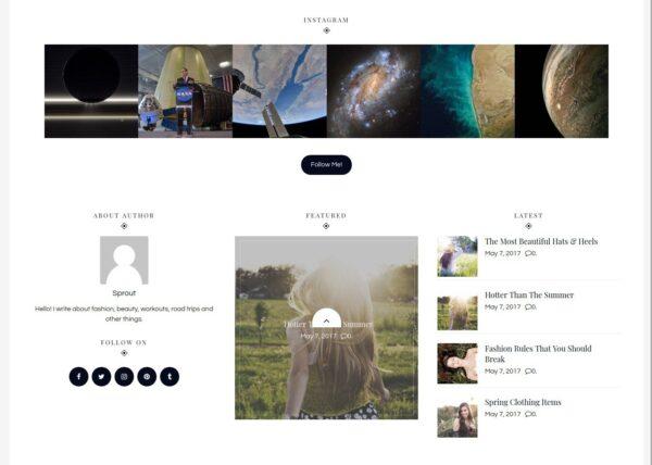 WordPress Kotisivut – Sprout