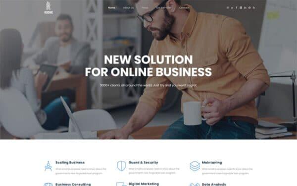 WordPress Kotisivut – Roche