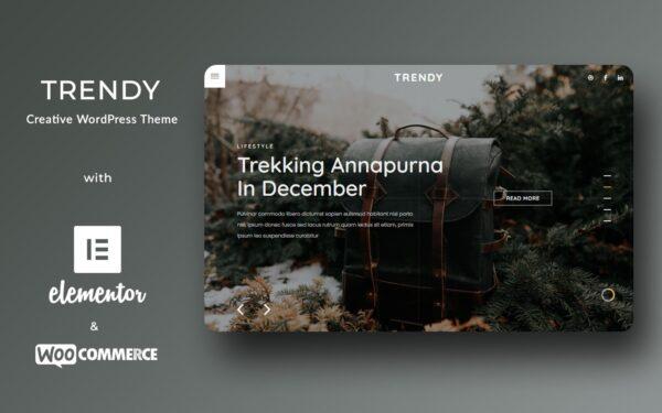 WordPress Kotisivut – Trendy